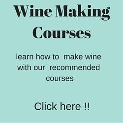 online wine courses